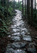 Kumano Kodo 'Ancient Pilgrimage Trails of Kumano