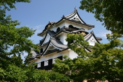 National Treasure Hikone Castle