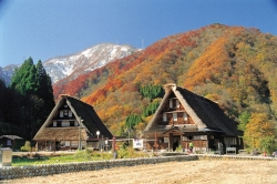 The Historic Village Gokayama