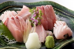 Kan-buri (The Japanese amberjack  )